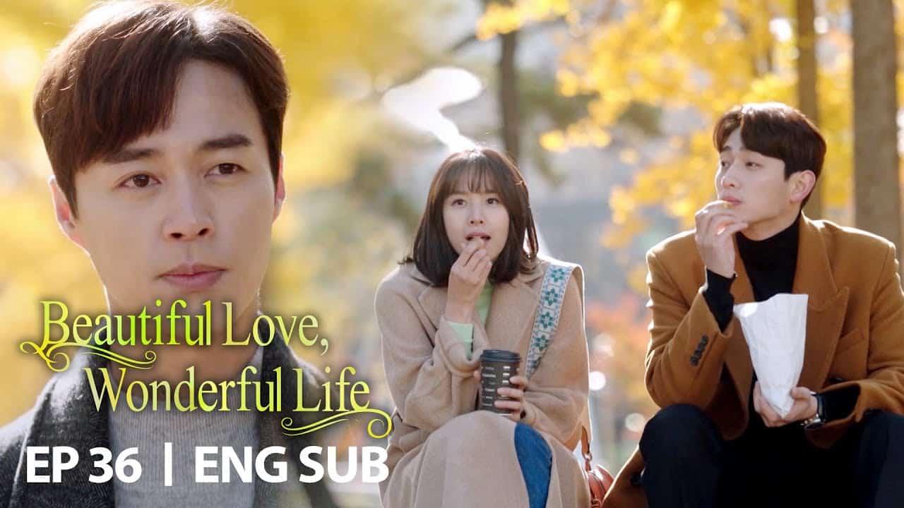 Beautiful-Love-Wonderful-Life